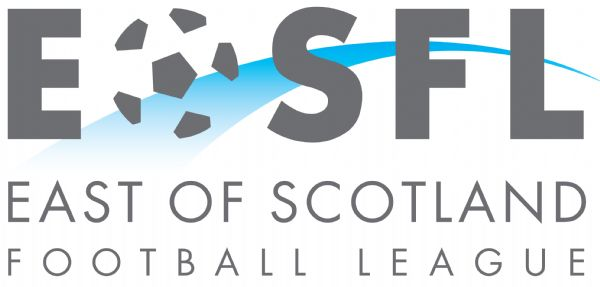 SFA suspend lower level football